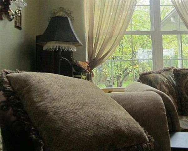 Những chiếc gối trên sofa thỉnh thoảng lại động đậy. Không ai biết lí do vì sao.