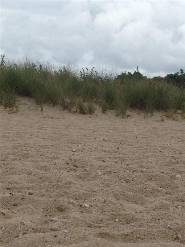 Những người đi dạo quanh bãi biển này thường nghe thấy những âm thanh kì lạ giống như tiếng người đang thì thầm. Nhưng nhìn quanh thì lại chẳng thấy ai. Thậm chí người ta còn chụp ảnh lại nơi này để về nhà kiểm tra lại.