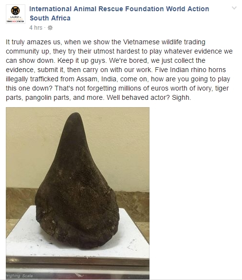 Trang fanpage của Tổ chức Cứu hộ động vật Quốc tế, Quang Tèo bị cho rằng đã buôn bán 5 chiếc sừng tê giác Ấn Độ. - Tin sao Viet - Tin tuc sao Viet - Scandal sao Viet - Tin tuc cua Sao - Tin cua Sao