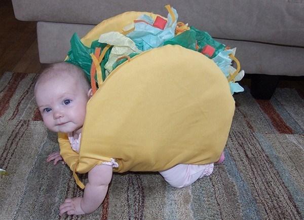 Tacos ơi, tacos vào túi chị. Chị để chị ngắm chứ chị không ăn.