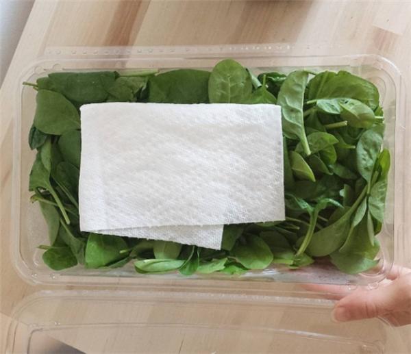 Làm thế nào để món salad trộn của bạn giữ được độ tươi lâu hơn? Đặt một miếng khăn giấy nhỏ lên trên cùng, nó sẽ giúp giữ lạiđộ ẩm cho rau.