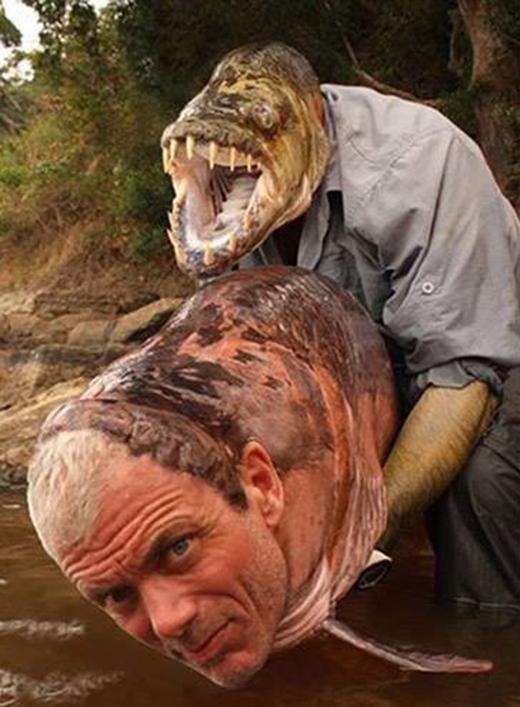 Con cá mặt người này có chút đáng sợ, còn người đàn ông mặt cá kia thì đúng là quái vật rồi.