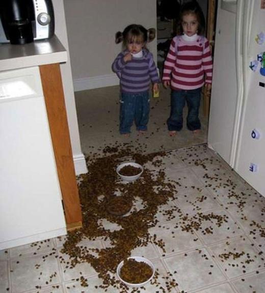 Với lượng thức ăn ngập nhà như thế này, cún cưng của hai cô bé sẽ không lo bị đói nữa.