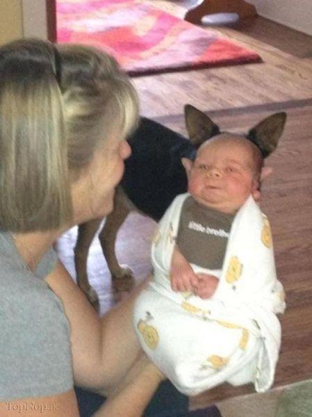 Đứa bé có đôi tai xinh nhỉ.