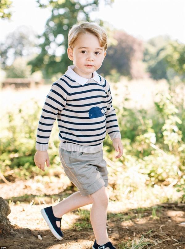 Vừa mới trải qua sinh nhật 3 tuổi, hoàng tử bé khiến nhiều ngườikinh ngạc với vẻ ngoài chững chạc nhưng không kém phần đáng yêu.