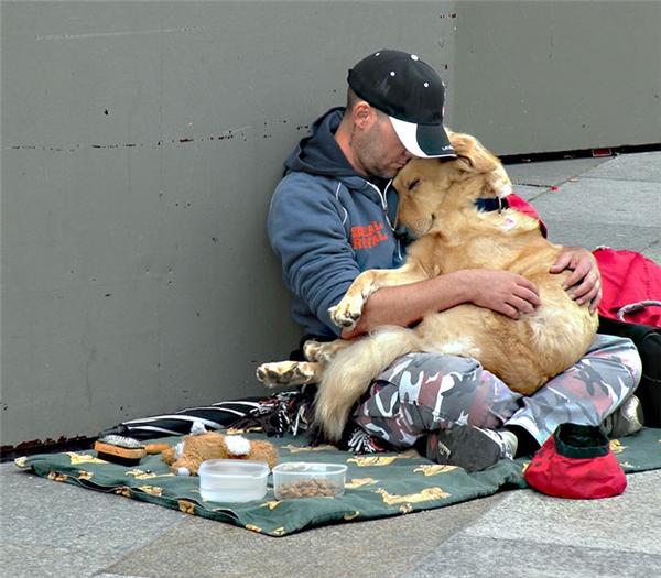 Rơi lệ trước tình cảm của người vô gia cư dành cho những chú chó