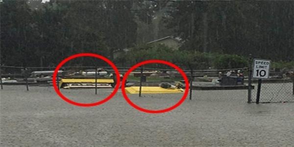 Bức ảnh ác mộng cho thấy quan tài trôi nổi trên con phố ngập lụt Louisiana