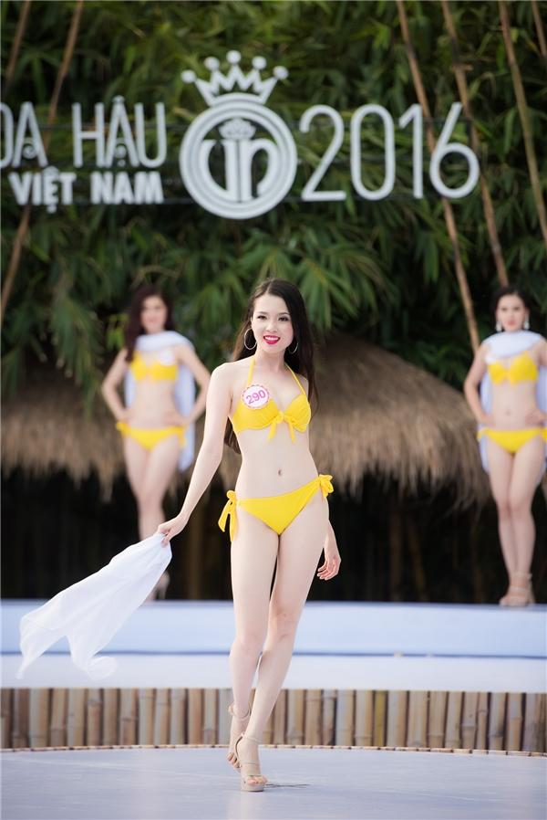 |Huỳnh Thúy Vi