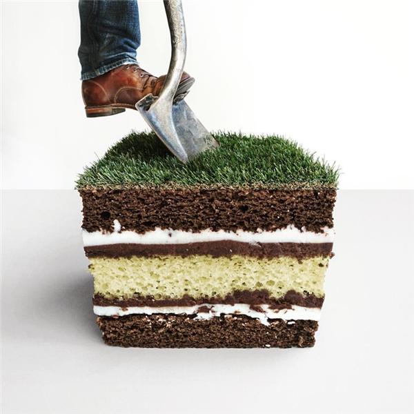 Hóa ra có cả một xứ sở bánh ngọt bên dưới thảm cỏ.