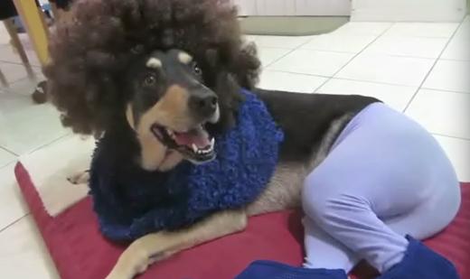 """""""Làm tóc xong rồi, đi chơi được chưa sen?"""""""