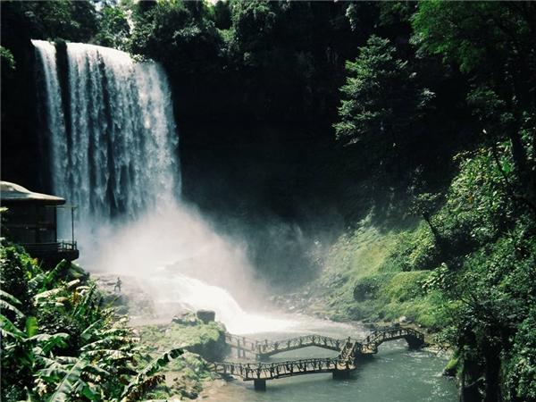 ThácĐamb'ri (Bảo Lộc) - Phải nhìn tận mắt bạn mới thấy được sựhùng vĩ và kiêu hãnh của dòng thácnằm giữ khu rừng nguyên sinh hoang sơ.