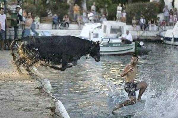 """Có lẽ người đàn ông này hy vọng làn nước mát sẽ làm dịu chú bò đang """"bốc hỏa"""" này."""