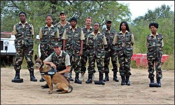 Shaya là một chú chó béc-giê Bỉ thuộc trung tâm Transfrontier Africa và Đơn vị chống săn bắt động vật hoang dã Black Mamb.(Ảnh:Transfrontier Africa)