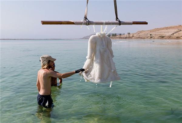 Từ một chiếc áo vải bình thường, nó đã biến thành... áo của Nữ Chúa Tuyết!(Ảnh: Bored Panda)