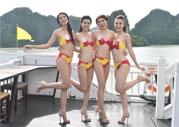 Di sản thiên nhiên thế giới Vịnh Hạ Long như sáng bừng bởi vẻ đẹp nóng bỏng của các thí sinh trong trang phục bikini Vietjet. Đây được xem là một trong những hoạt động đáng chú ý nhất tại cuộc thi năm nay.
