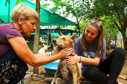 Nhiều loài động vật khác cũng đã được tổ chức này cứu giúp và chăm sóc đến khi khỏe mạnh hoàn toàn.