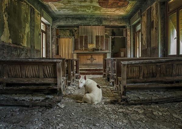 Claire bị lạc vào một nhà thờ cổ.