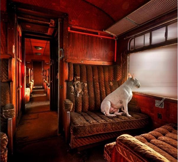 Bâng quơ lạc vào những chuyến tàu không đích đến.