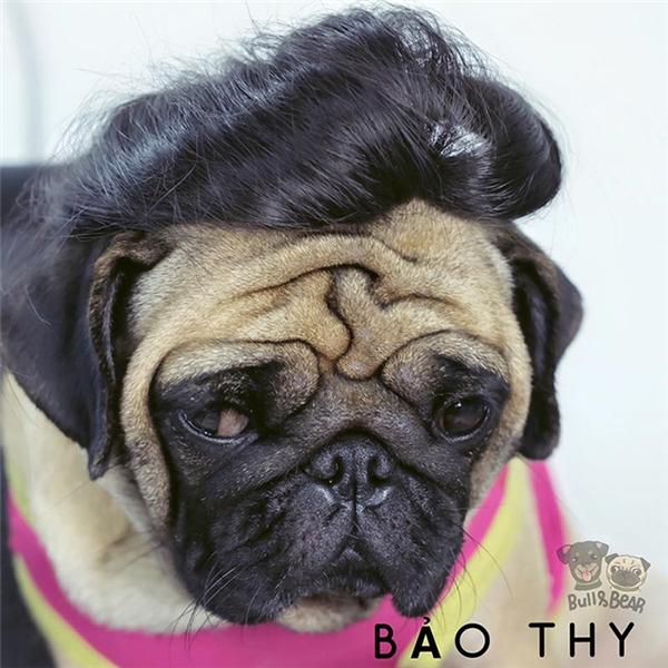 Tóc Bear đen hơn, bồng hơn và xù hơn tóc Bảo Thy nhiều nhé.