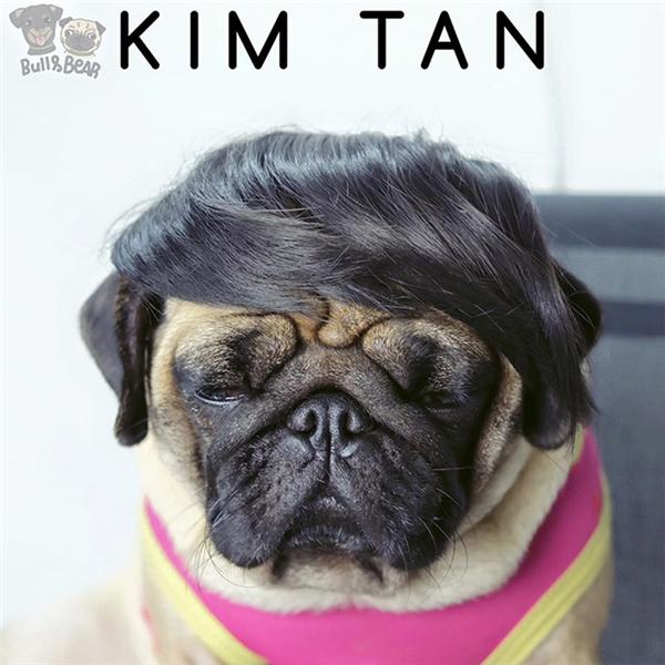 Có Kim Tan nào mà mặt mày như thể bị dựng dậy lúc 3h sáng để chụp hình thế này không?