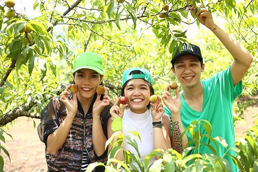Các thành viên củađội 3 hào hứng khi thămvườn đào.