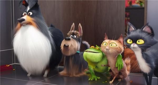 3. The Secret Life of Pets - 724,4 triệu USD*: Trong một năm mà dòng phim hoạt hình thắng thế, xưởng Illumination có thành công tiếp theo sau Minions (2015) với tác phẩm xoay quanh một nhóm thú cưng ở thành phố New York. Những chi tiết hài hước và phần hình ảnh tuyệt đẹp giúp The Secret Life of Pets dễ dàng chinh phục người xem, đặc biệt là các em nhỏ. Theo kế hoạch, bộ phim sẽ ra mắt phần hai vào năm 2018. (Ảnh: Universal)