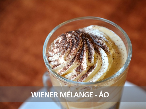 Người Áo có món cà phê khá giống với cappuccino, gồm espresso phủ một lớp kem và bọt sữa, rắc thêm bột ca cao bên trên.