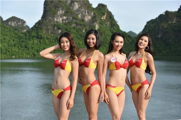 …tỏa sáng trong trang phục bikini Vietjet.