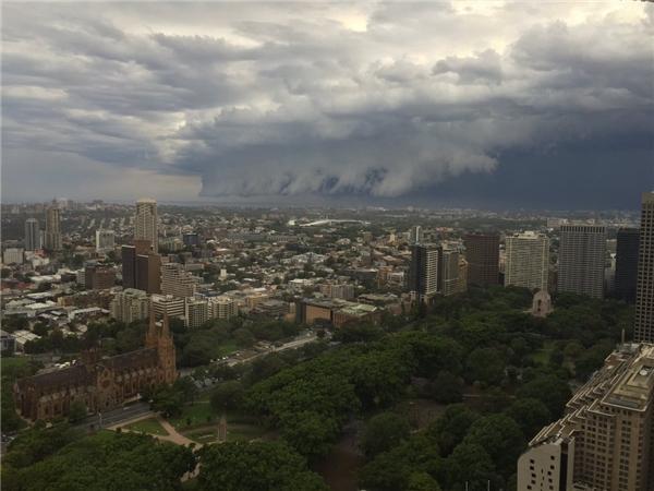 """Chiều thứ 6 ngày 6/11, một """"con sóng""""lớn khủng khiếp đãxuất hiện tại bãi biễn Bondi ở Sydney, Úc khiến nhiều người khiếp đảm. Tuy nhiên, sau đó người ta phát hiện đây chỉ là đám mây khổng lồ trôngchẳng khác gì con sóng đang lao đến nuốt chửng cả thành phố mà thôi."""
