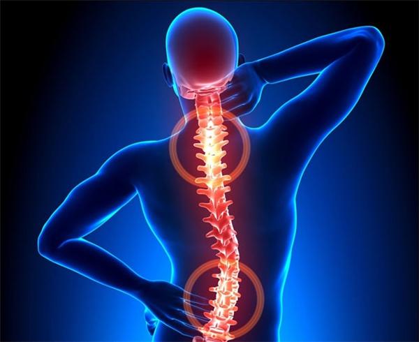 Quá trình vận động của cơ thểdiễnra có hiệu quả hay không đều nhờ vào sự dẻo dai, bền bỉ củacột sống.