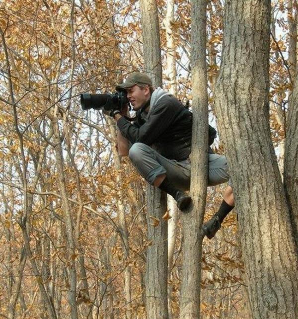 Làm nhiếp ảnh gia dường như cũng đồng nghĩa với việc phát triển kỹ năng leo cây thần sầu.