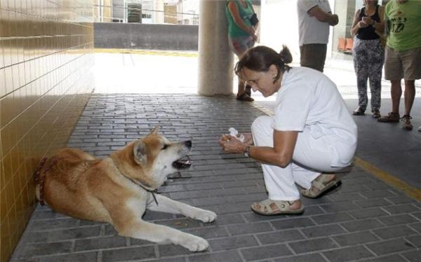 Hình ảnh được các nhân viên bệnh viện đăng tải lên mạng xã hội. (Ảnh: Telegraph)