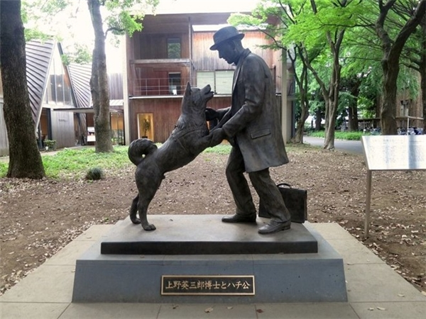 Bức tượng tưởng niệm Hachiko - chú chó trung thành kiên nhẫn đợi chủ đến lúc chết. (Ảnh: Internet)