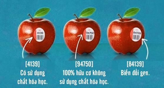 Nếu để ý kĩ, bạn sẽ phát hiện trên các quả táo bán trong siêu thị thường có dán tem số. Dãy số đó chính là thông tin về thành phần của trái táo, thể hiện chúng thuộc loại biến đổi gen, có sử dụng chất hóa học hay 100% là hữu cơ.