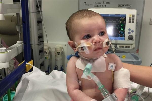 Gabriella đượcphẫu thuậtkẹptim trong khung xương sườnvà lắp thêm một lá phổi giả.