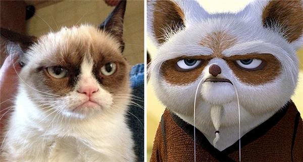 Sư phụ gấu trúc có lẽ đã tìm được người anh em cùng cha khác ông nội của mình là mèo Grumpy.