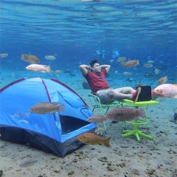 Còn gì thú vị hơn được ngồi thảnh thơi tronglàn nước mát và ngắm nhìn đàn cá đang tung tăng bơi lội.