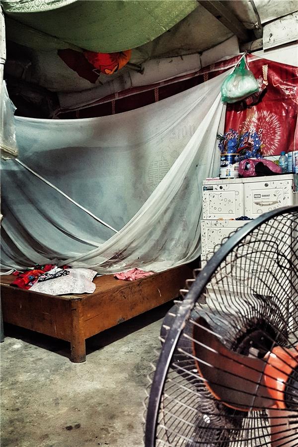 Hai vợ chồng T. cùng quê ở Vĩnh Phúc, lên Hà Nội kiếm sống, mỗi người một nghề, nhà cửa tuềnh toàng chả có gì ngoài chiếc giường kê ở góc nhà và chiếc quạt,chiếc tủ nhựa đựng quần áo. Giường chiếu lúc nào cũng phải buôngmàn dù không sử dụng vì ven đê nhiều muỗi lẫncôn trùng.