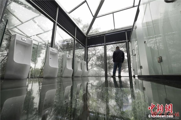 Từ nhà vệ sinh du khách có thể nhìn xuống khung cảnh hùng vĩ của rừng cây bên dưới.
