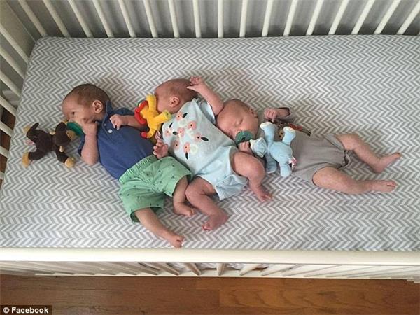 Trong khi bé trai Emmett mang ADN của bố Smeetsthì2 bé gái Harper và Collinsmang ADN của bố Ruehs.