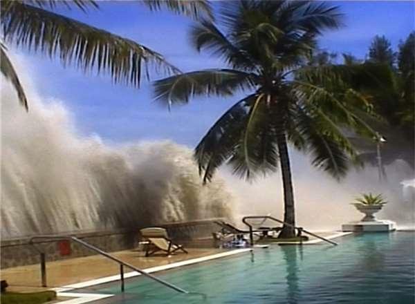 Cảm động voi con cứu mạng bé gái 8 tuổi trong sóng thần Tsunami