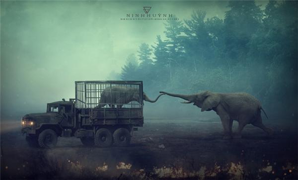 Đây có phải là điều con voi muốn trải qua khi nó chào đời? Chắc chắn là không! Vậy tại sao con người lại bắt chúng trải qua điều đó? Đây có phải là điều con người muốn trải qua khi ta chào đời? Chắc chắn là không! Vậy tại sao lại bắt các giống loài khác hứng chịu những điều ta không hề muốn?