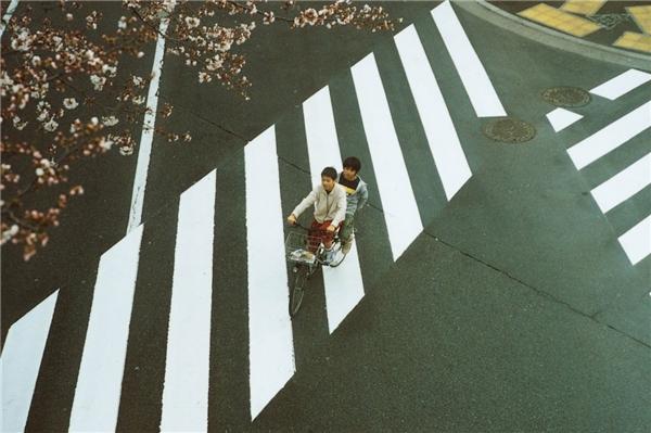 Hirokazu Koreeda cho khán giả thấy những mặt trái của việc giáo dục trong một gia đình. (Ảnh: Internet)
