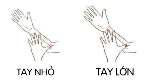 Xem kích cỡ tay nói gì về tính cách của bạn