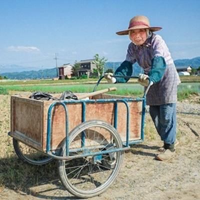 Trên cánh đồng, một cụ bà đang đẩy chiếc xe đi làm đồng về tạiNiigata ngoại ô Tokyo. Đầu bà lão vấn đang đội một chiếc mũ làm nông nghiệp truyền thống.