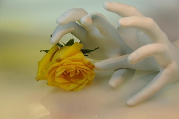 """Tác phẩm""""hái hoa"""" mang màu sắctrừu tượng đầy ý nghĩa cụ Kimiko."""