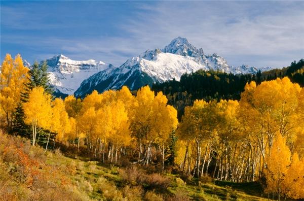 Ridgway, Colorado: Bạn có thể tìm thấy lá thu đỏ ở bất kỳ đâu, nhưng để ngắm lá thu vàng thì hãy đến Colorado, đặc biệt là Ridgway, nơi có những rừng cây dương lá rung khoe sắc vàng rực mỗi độ thu sang.