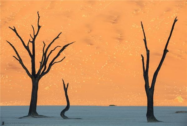 """Sa mạc Nambibở Namibia với khung ảnh """"ảo như tranh""""."""