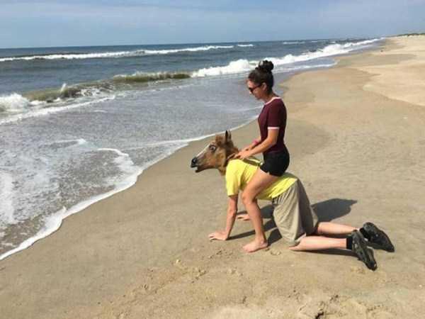 Ngựa có biếtbơi không nhỉ?