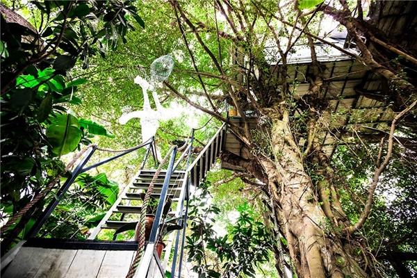 """Giới trẻ Hà Nội """"phát cuồng"""" với nhà cây độc đáo ở ngoại thành"""